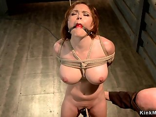 Huge boobs sub suspended beside hogtie